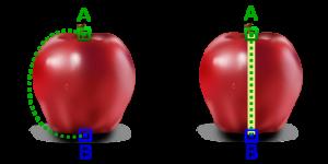 Illustration du principe du trou de ver. (Crédit: C.P. Rigel)